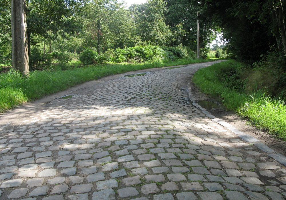 1410 Bogaertsheide 2.JPG